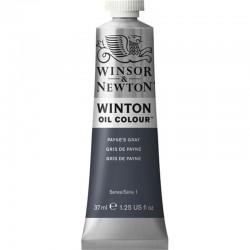 Oleo Winton Winsor & Newton 37 ml Gris de Payne (465)