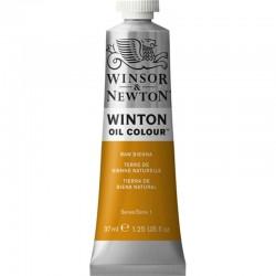 Oleo Winton Winsor & Newton 37 ml Siena Natural (552)