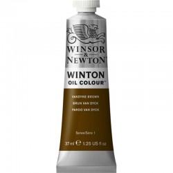 Oleo Winton Winsor & Newton 37 ml Marron Van Dyck (676)