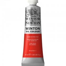Oleo Winton Winsor & Newton 37 ml Rojo de Cadmio (095)