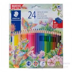 Lapices de Colores Staedtler x24