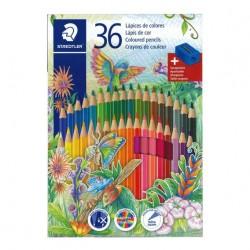 Lapices de Colores Staedtler x36