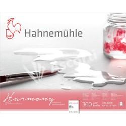 Block Hahnemühle Harmony Watercolour 24x30cm 12h